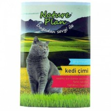 Nature Plan Kedi Çimi 500 Ml